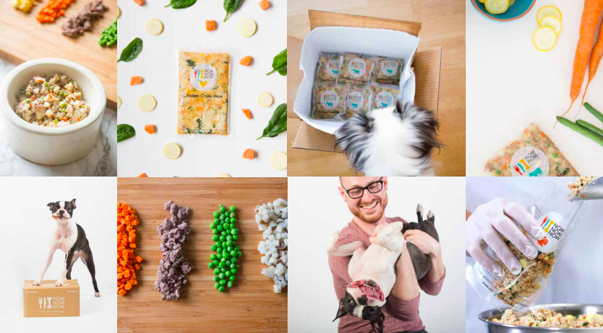 You Loved Your Pet: NomNomNow #1 Fresh Food Delivery Service for Pets