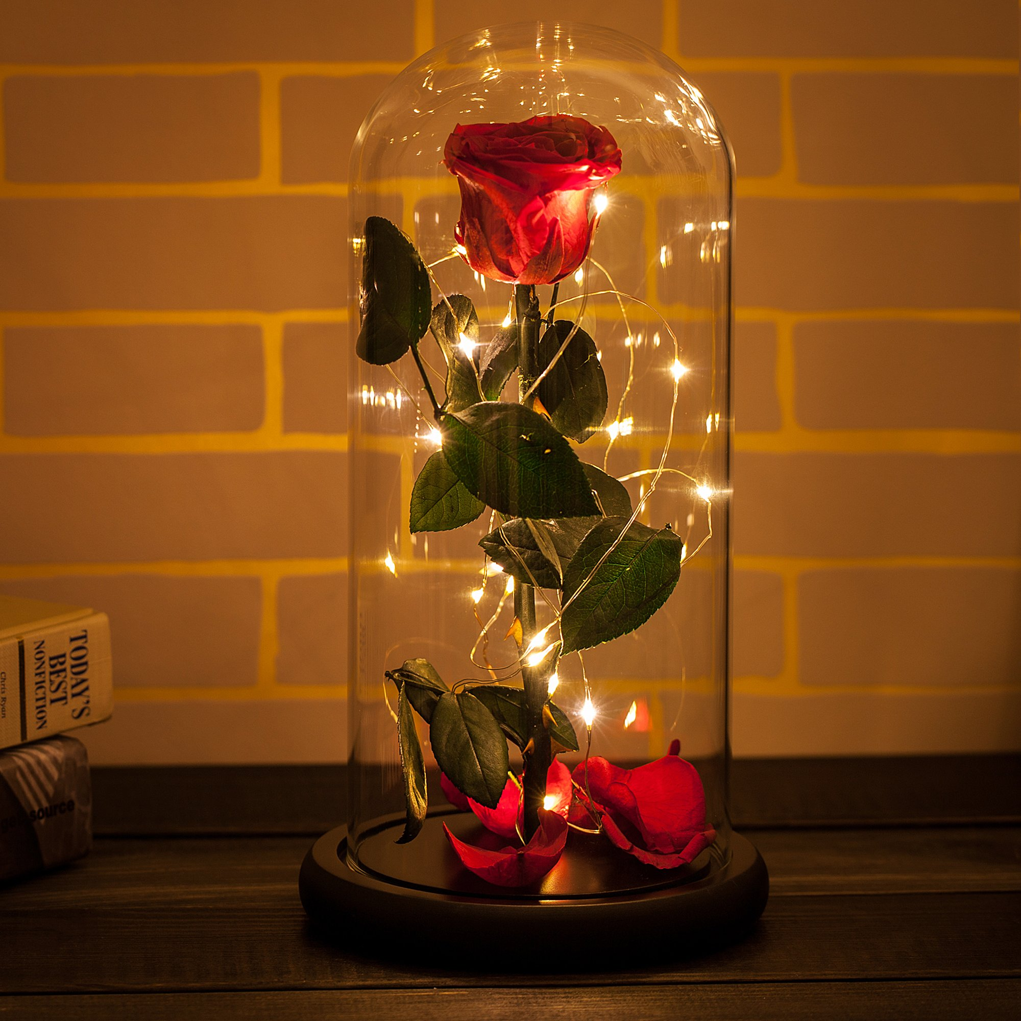 Beauty and the Beast Dome Rosephoria Rose Flowers on this valentines day