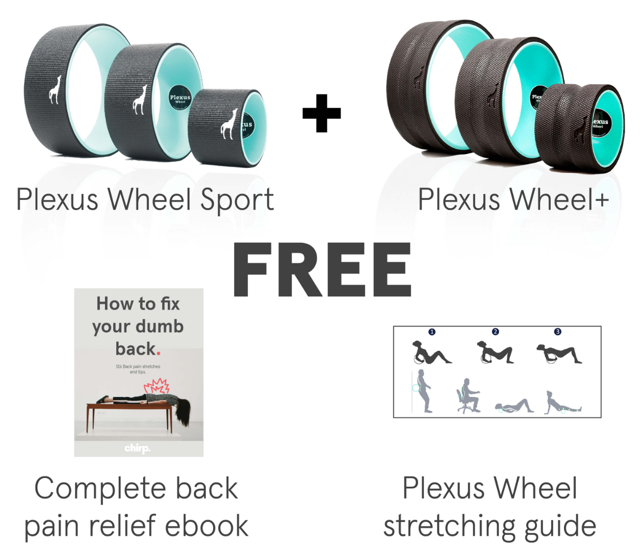 The Complete Back Pain Relief Bundle By Go Chirp