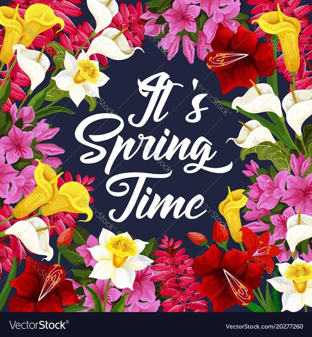 Spring Best Deals coupon codes