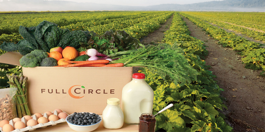 Full-Circle-Fruit-and-Vegetable-Review